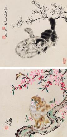 孙菊生(b.1913)猫趣两帧