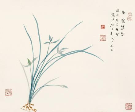 张伯驹(1898-1982)  兰花