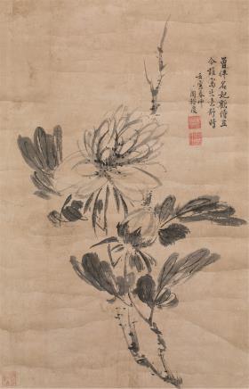 周裕度(明)牡丹